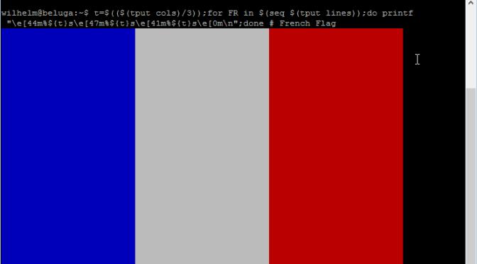 Un drapeau français en ligne de commande