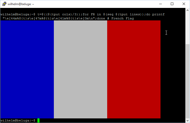 CLI French flag